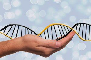 בדיקת DNA